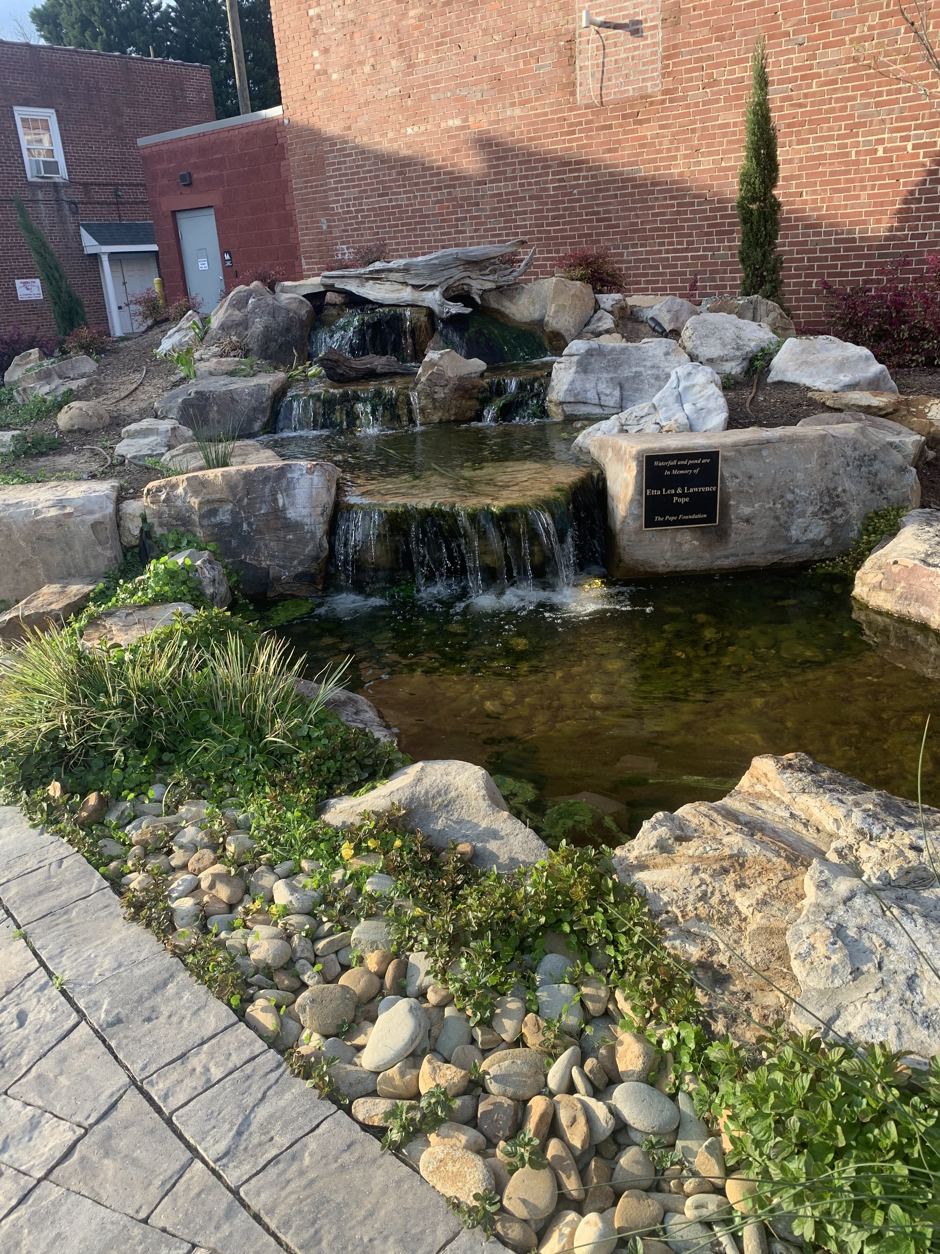 Local spring destinations, Founders Park